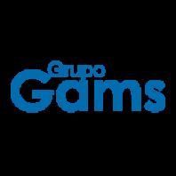 GRUPO GAMS